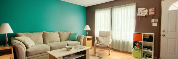 professional painting services streamwood